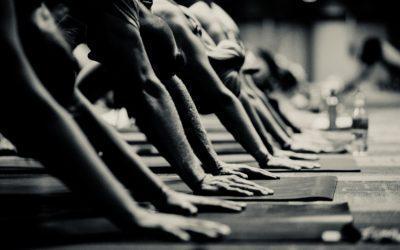 Yogalehrer Grundausbildung